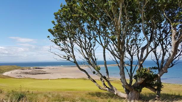 Renaissance Golf Course6